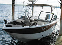 Captain Joes Seneca Lake Fishing Charters